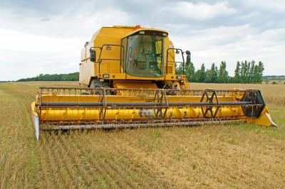 Nowe dołki notowań zbóż w USA