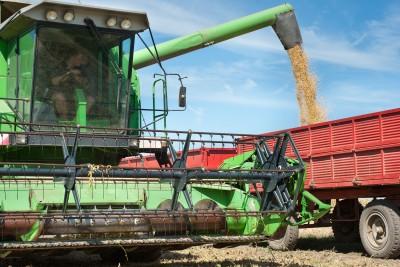 Ukraina zwiększa eksport zbóż