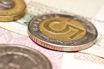 Mocny złoty negatywnie wpływa na ceny zbóż w Polsce
