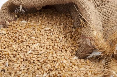 Przeceny zbóż w Paryżu