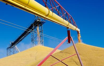 Ożywienie eksportu zbóż drogą morską
