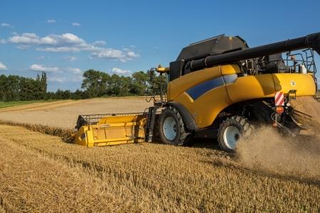 Ukraina: Dobry rok dla produkcji roślinnej