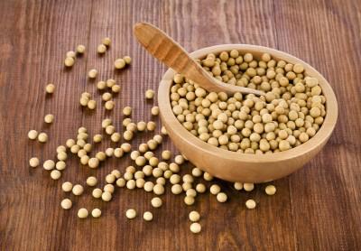 Prognozy globalnych zbiorów soi wg USDA