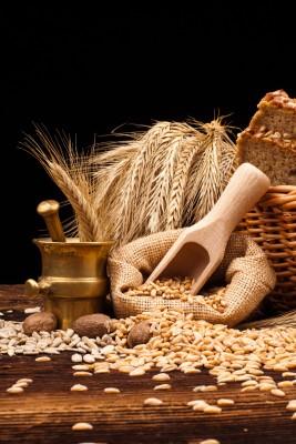 ARR: Tańsza pszenica i kukurydza, droższe m.in. żyto