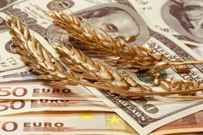 Powstrzymany spadek cen zbóż