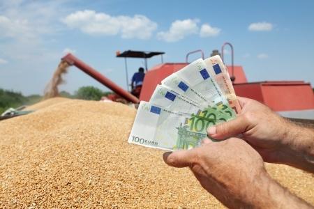 Presja podażowa na rynku zbóż