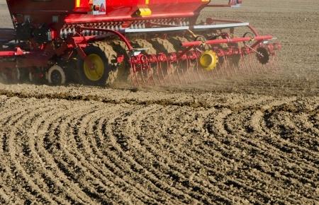 Zasiewy zbóż