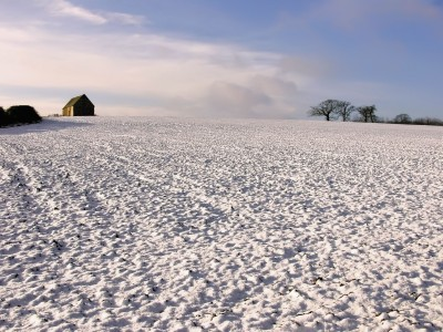 Zimowanie w dobrym stanie