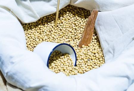 Światowy skok wzwyż notowań zbóż i soi