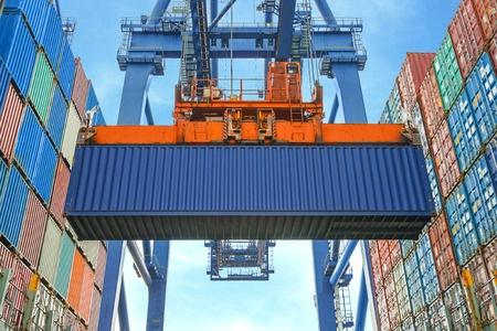 Światowe prognozy eksportu rzepaku