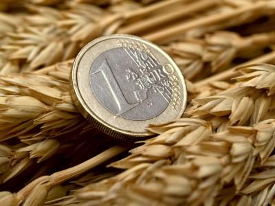 Jedno euro na tle zboża